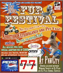 November_2014_Fur Festival_El Paso_TX_Flyer