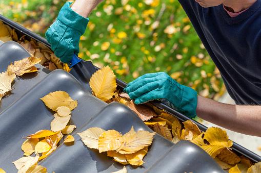 Easy Fall Home & Finance Fixups