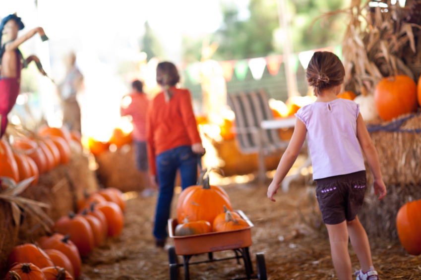 10 Free Family-Friendly Fall Outdoor Activities